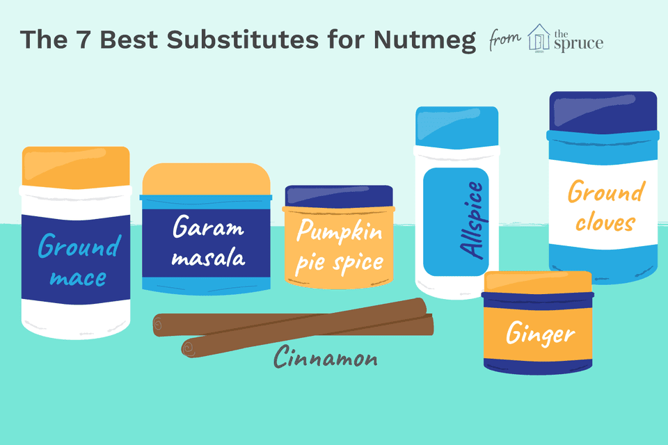 Illustration of nutmeg substitutes