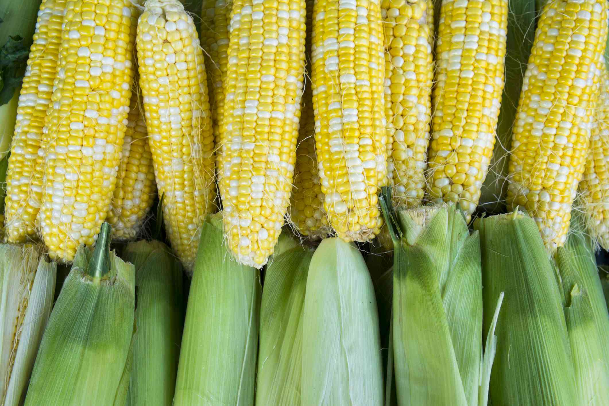 6 Ways to Cook and Use Fresh Sweet Corn