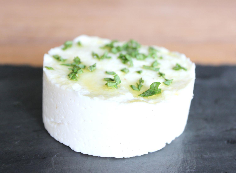 Homemade Goat Cheese