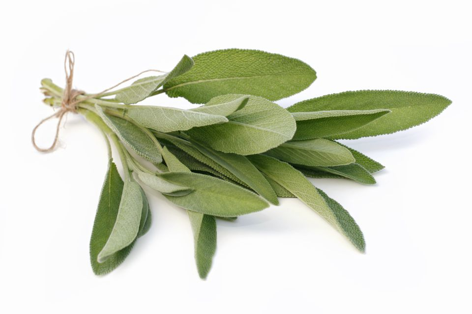 A bunch of sage