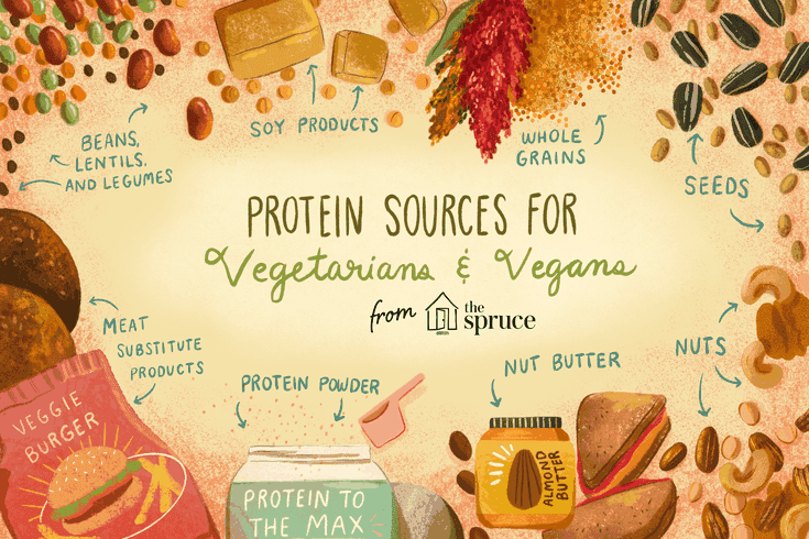 vegan diet and protein sources