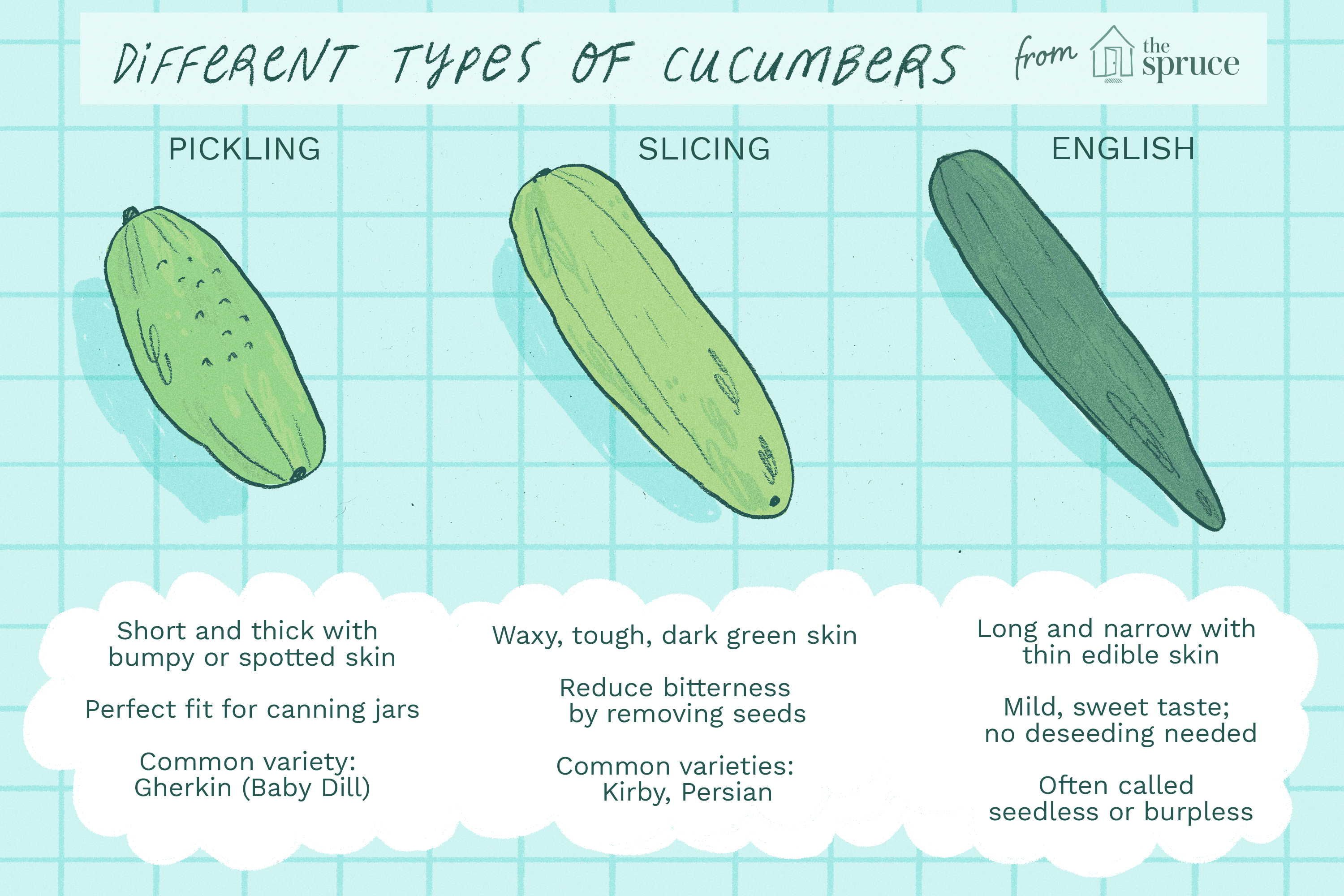 Diffe Types Of Cubers Ilration