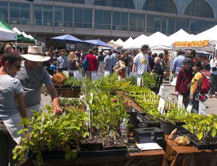 San Francisco Farmers Market
