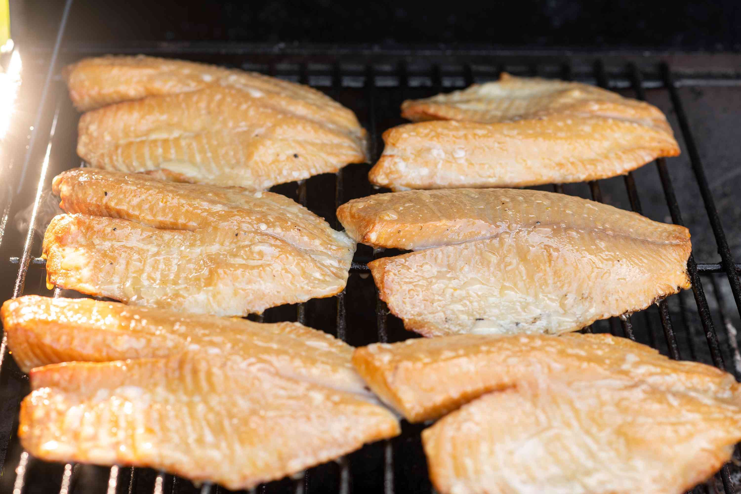 Place the fish in the smoker