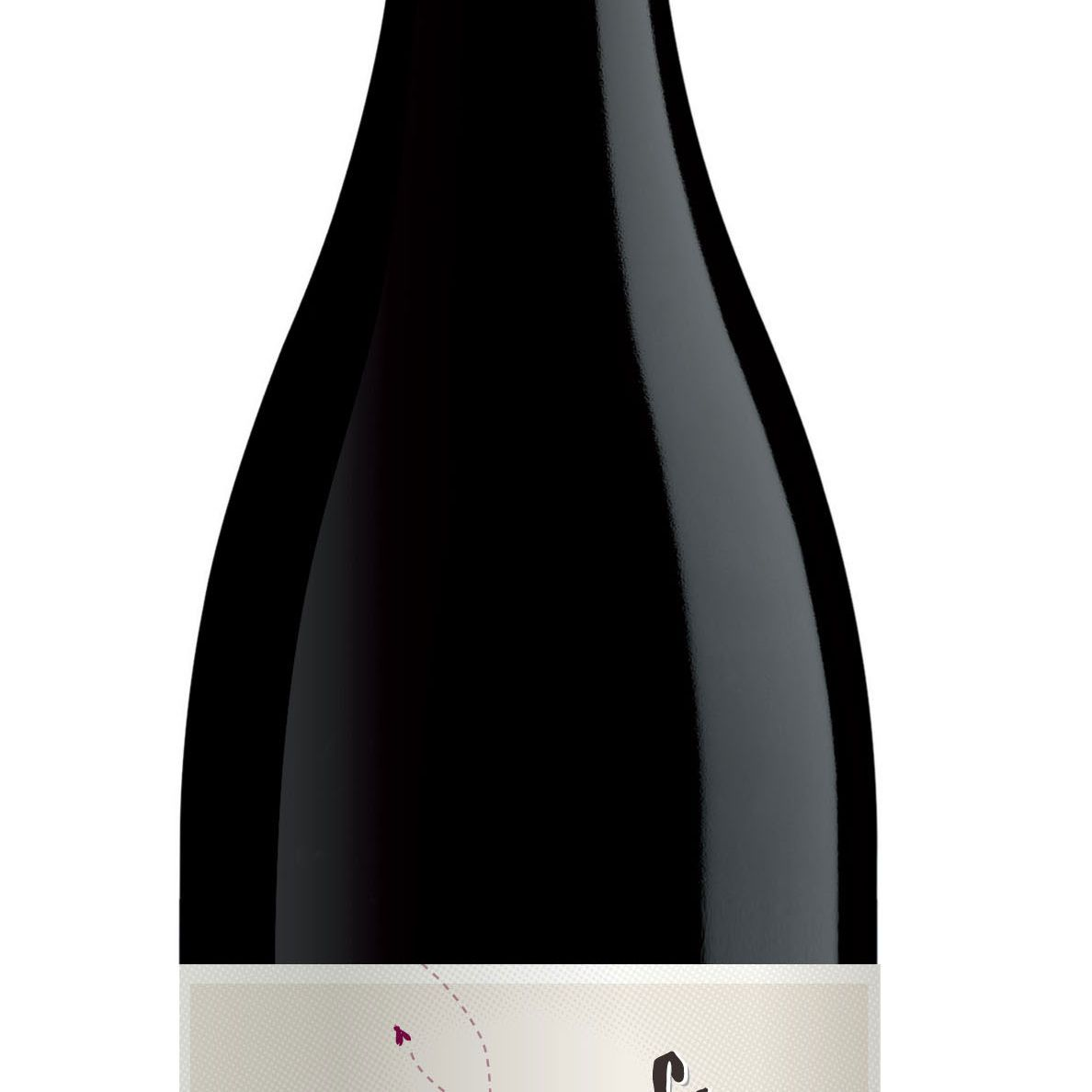 Shoofly Shiraz