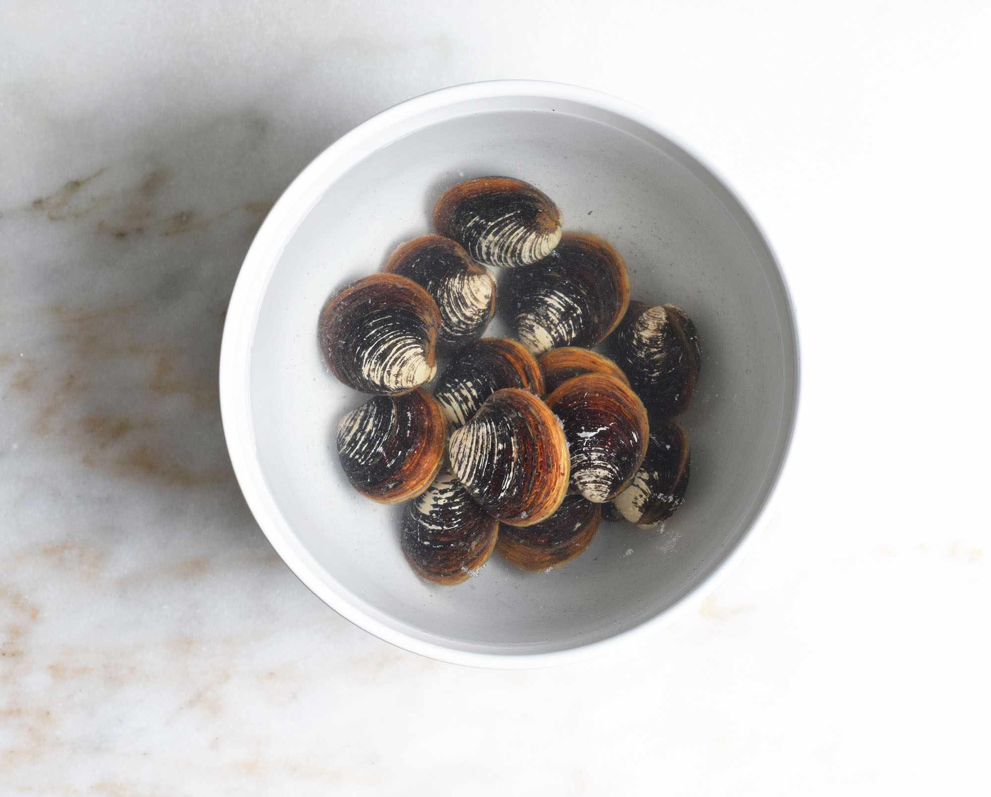 clams soaking in cold water