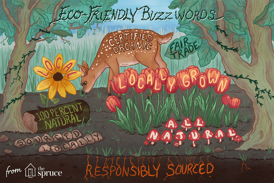 eco friendly buzzwords