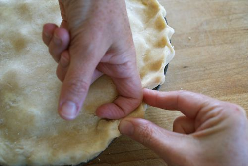 Large scallop edge crimp on a pie crust edge
