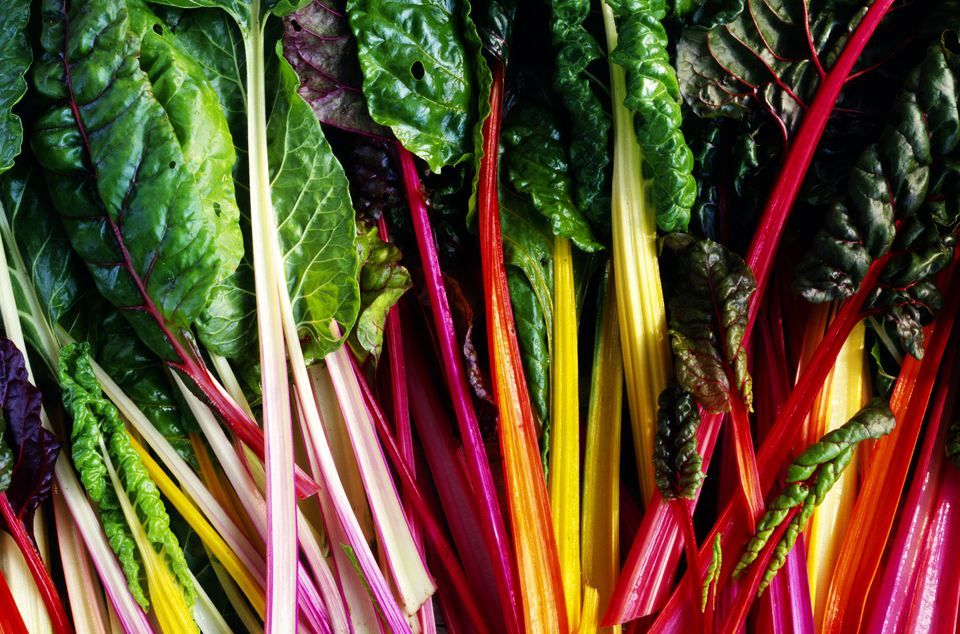Bunches of rainbow chard