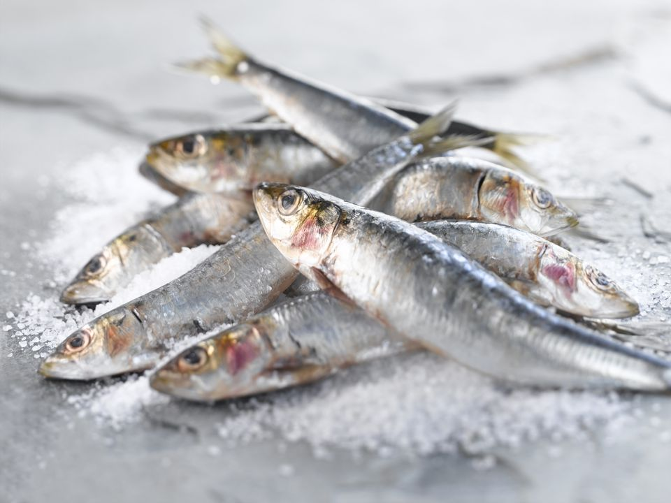 A pile of fresh sardines