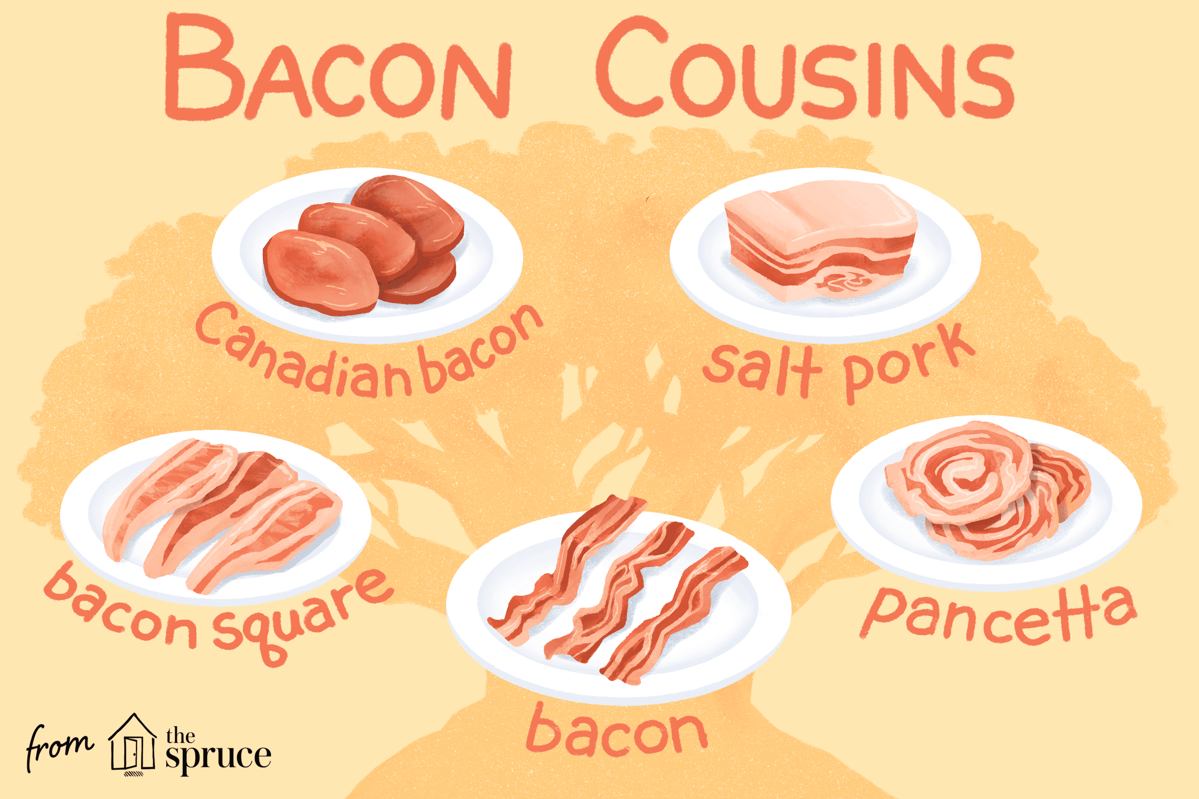 different types of bacon