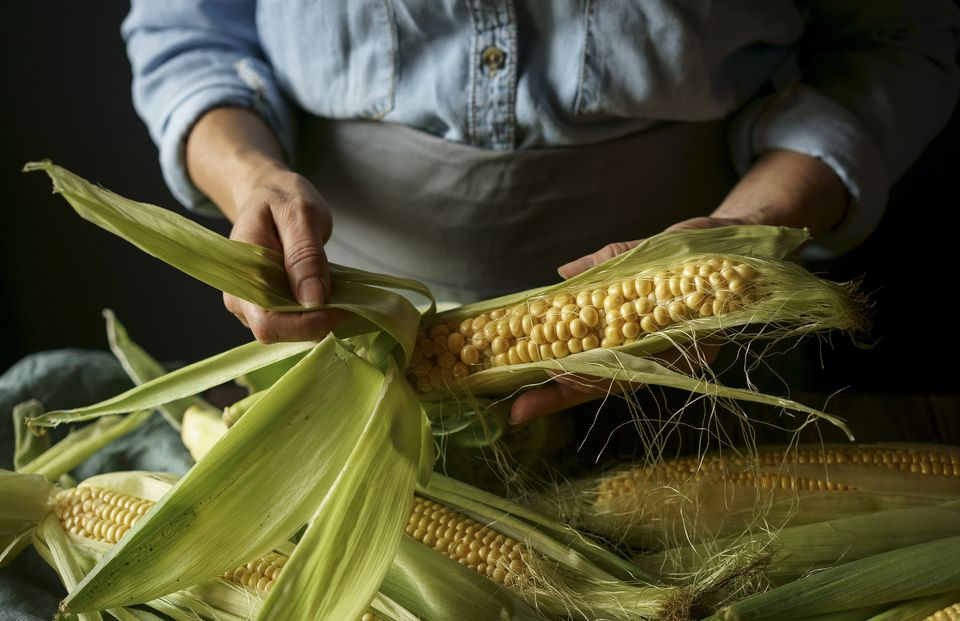 Close up of Caucasian woman shucking corn