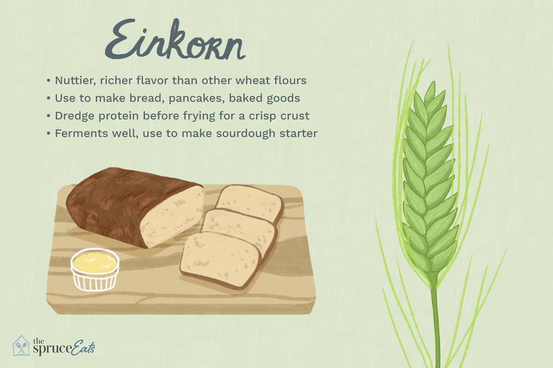 what is einkorn