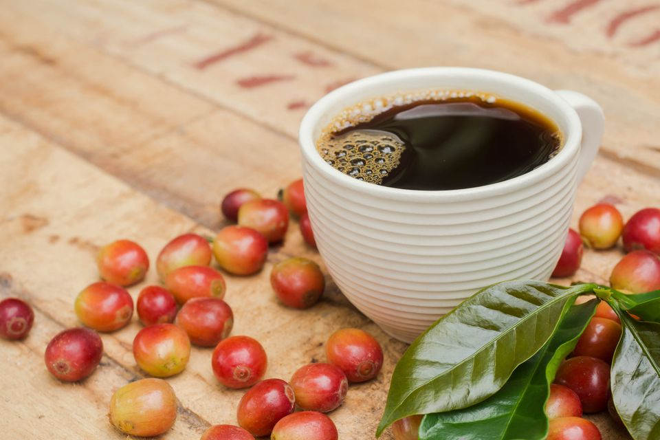 fresh coffee beans with cup of hot brewed coffee